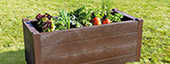 Planters Raised Beds